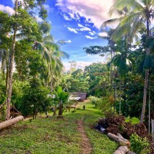 【世界最後の秘境】パプアニューギニアは本当に危ないのか?