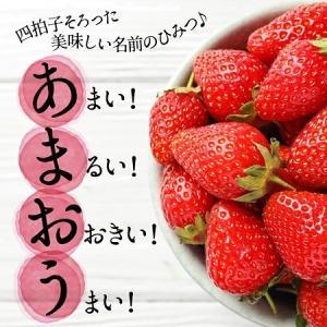 ふるさと納税・めっちゃ美味しい苺の王様「あまおう」福岡県新宮町