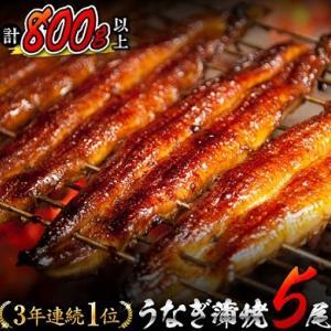 ふるさと納税・あの!!うなぎ蒲焼5尾(計800g以上) 宮崎県都農町