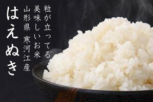 お米好きがうなる味・山形のお米「はえぬき」の特徴と魅力。美味しくごはんを炊く裏技も。。【ふるさと納税】