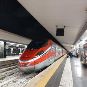 アルティメットについて:イタリア代表選考会