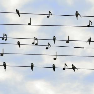 """【歌唱力UP】歌が上手く聴こえるコツ!歌詞に""""想い""""をのせる"""