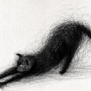 Adobeのfrescoで描いてみた9 のびをする猫