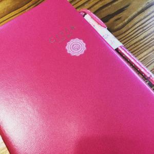 「未来を予約する手帳」~CITTA手帳を使っています