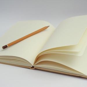 【子どもの受験対策】試験に必要な「無地鉛筆」は無印、三菱、トンボ、、どれにする?