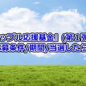 『前澤カップル応援基金』創設!応募条件/手順/当選したら?急げ6/14迄