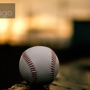 鹿児島城西野球部、来年春のセンバツ出場が濃厚に