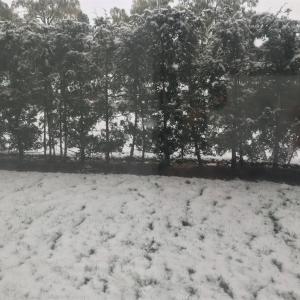 トロント 初雪!!!!!!冬の過ごし方は?