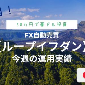 【ループイフダン/7週目】今週の運用実績!不労所得1万円突破しました!