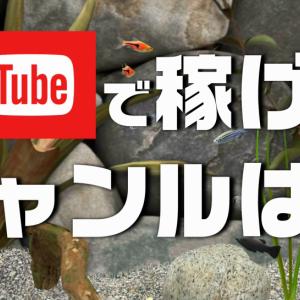 youtubeで稼げるジャンル教えます。