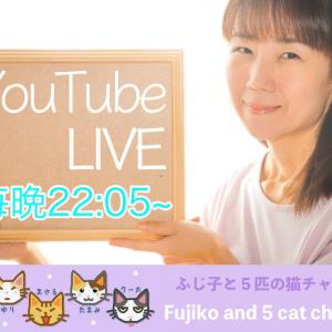 猫好き熟女のおやすみ雑談LIVE