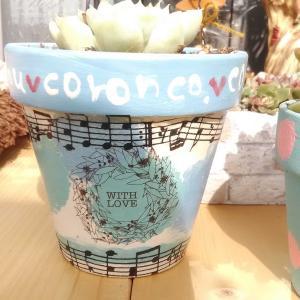 多肉植物とリメイク鉢