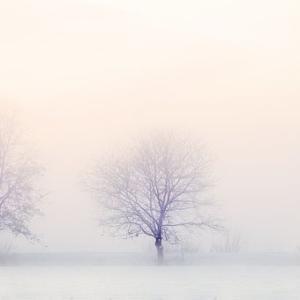 壁紙の暖色もまた冬籠