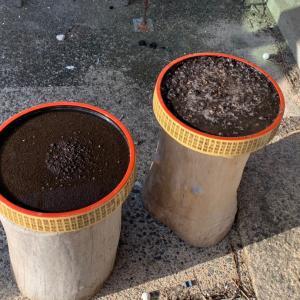 水草水上栽培計画