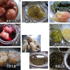 保存食作り 梅・山椒・生姜