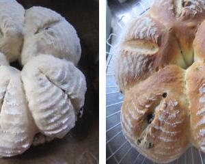 レーズンたっぷり入れてのパン作り ノアレザン