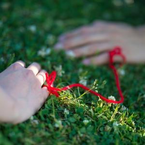 report30:【ステップファミリー】前に進めない、決断できないと悩んでいる方へ 【再婚への極意】