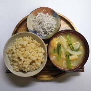 ロウカット玄米のシラスご飯に魚の毒を消す大根の味噌汁の一汁一菜の朝ごはん