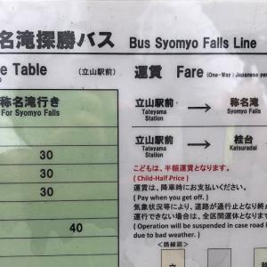2020年9月17日称名滝での柴犬ゆき富山市