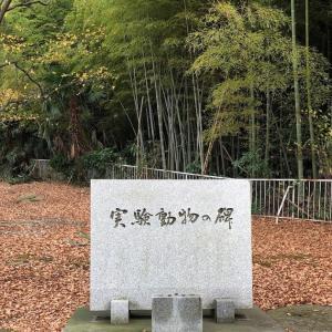 20201127富山大学杉谷キャンパス実験動物の碑
