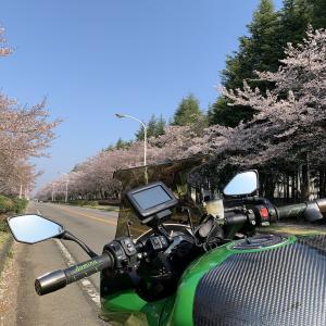 2020/04/04 いつもの筑波山と霞ヶ浦(その1)