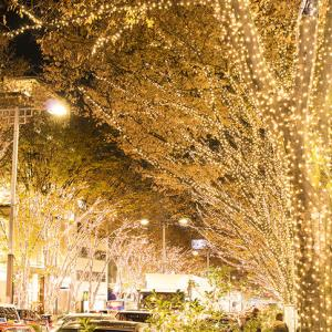 【イベント情報】11月28日~12月25日 TENJIN Christmas Market