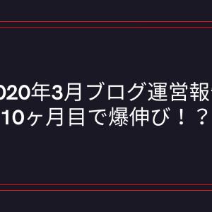 【2020年3月ブログ運営報告】10ヶ月目で爆伸び!?