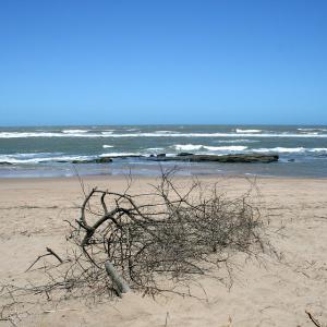 【アングラーは知っている】海岸の人工物。枝や石で造られた目印の意味