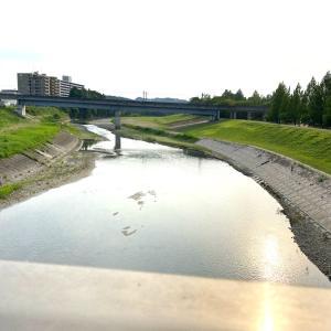 七北田公園の河川敷が広くなってる。BBQスポットのあたりなど