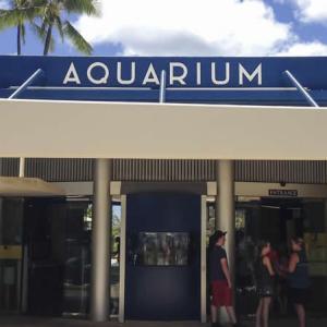 ワイキキ水族館が今月末に再開
