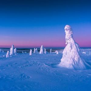フィンランド政府観光局、サステナビリティを旅行の新常識に