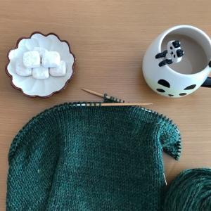 野口智子さん「わたしのセーター」から丸ヨークのつぶつぶセーターを編んでいます その2
