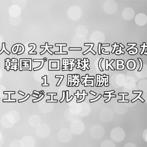 アンヘルサンチェス投手、韓国プロ野球(KBO)から巨人へ!年俸や成績をまとめました!