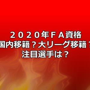 2020年FA選手を迎えるプロ野球選手は?注目の山田哲人選手は大リーグ挑戦か?それとも国内移籍??
