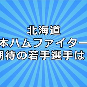 北海道日本ハムファイターズ期待の若手選手は?あの選手は覚醒するの?