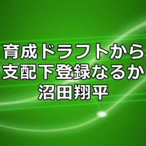 沼田翔平選手は支配下登録を勝ち取れるか?ドラフトレポートの評価や二軍成績まとめ