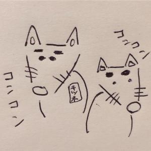 妊活〜風邪菌との戦い〜