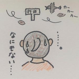 妊活〜高温期ホルモン値〜