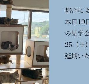 【猫丸情報】見学会 延期のお知らせ