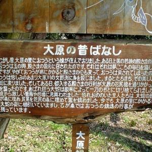 京都 紅葉100シリーズ 大原 お寺・史跡散策 NO.98