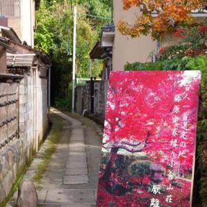 京都紅葉100シリーズ 隠れ名刹紅葉厭離庵(えんりあん)NO.105