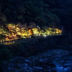 京都 嵯峨野トロッコ列車・秋のライトアップ