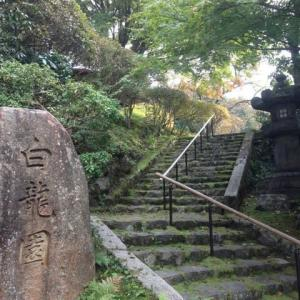京都 紅葉100シリーズ寺社 1日50名限定の白龍園 NO.104
