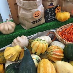 かぼちゃと言えば北海道!?生産量が半端じゃない!
