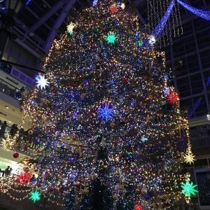 札幌に来たら見ないと損!サッポロファクトリーの巨大クリスマスツリー