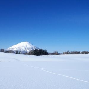 これが冬の北海道だ!雪と闘うリアルな日常【自然・気候・体験談】