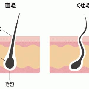 くせ毛からストレートにする方法