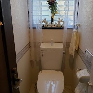 夜家事は私の一日の始まり⁉️終わり⁉️〈トイレ編〉
