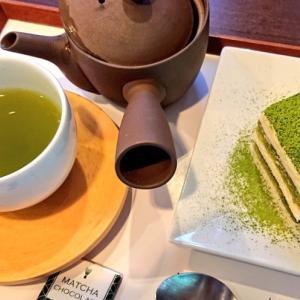 緑茶で予防