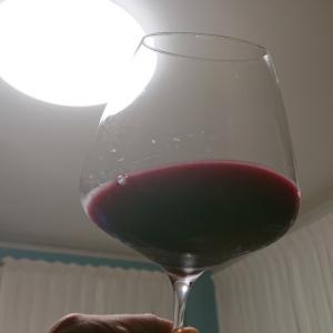 ワイン雑学❗